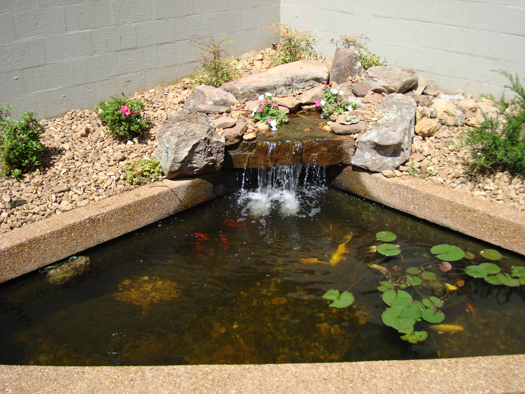 Morris nursery landscapes inc ponds pools portfolio for Pond features